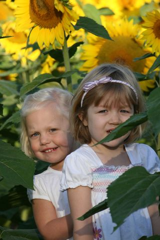 Ellie_and_katherine_in_the_sunflower_field_1