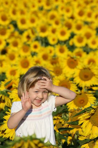 Katherine_in_the_sunflower_field_1