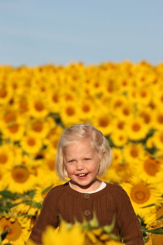 Ellie_in_the_sunflower_field_6